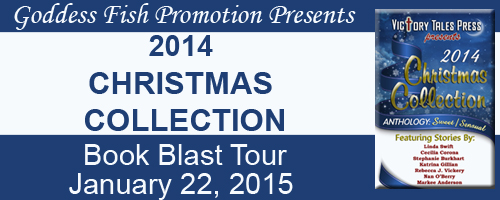 MBB_TourBanner_2014ChristmasCollection